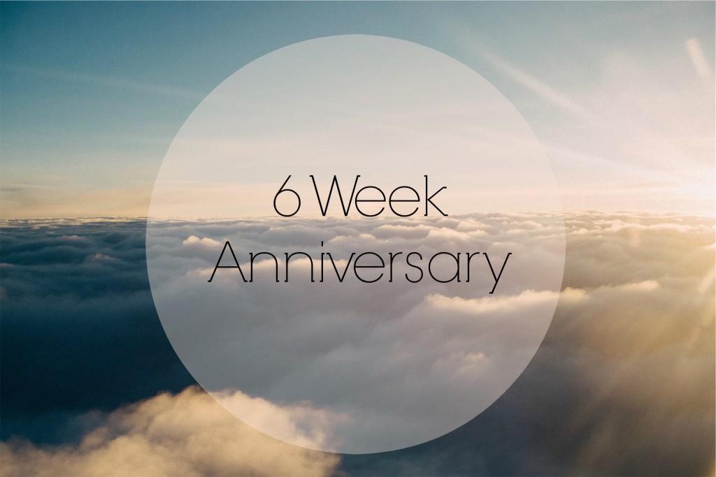 6 Week Anniversary