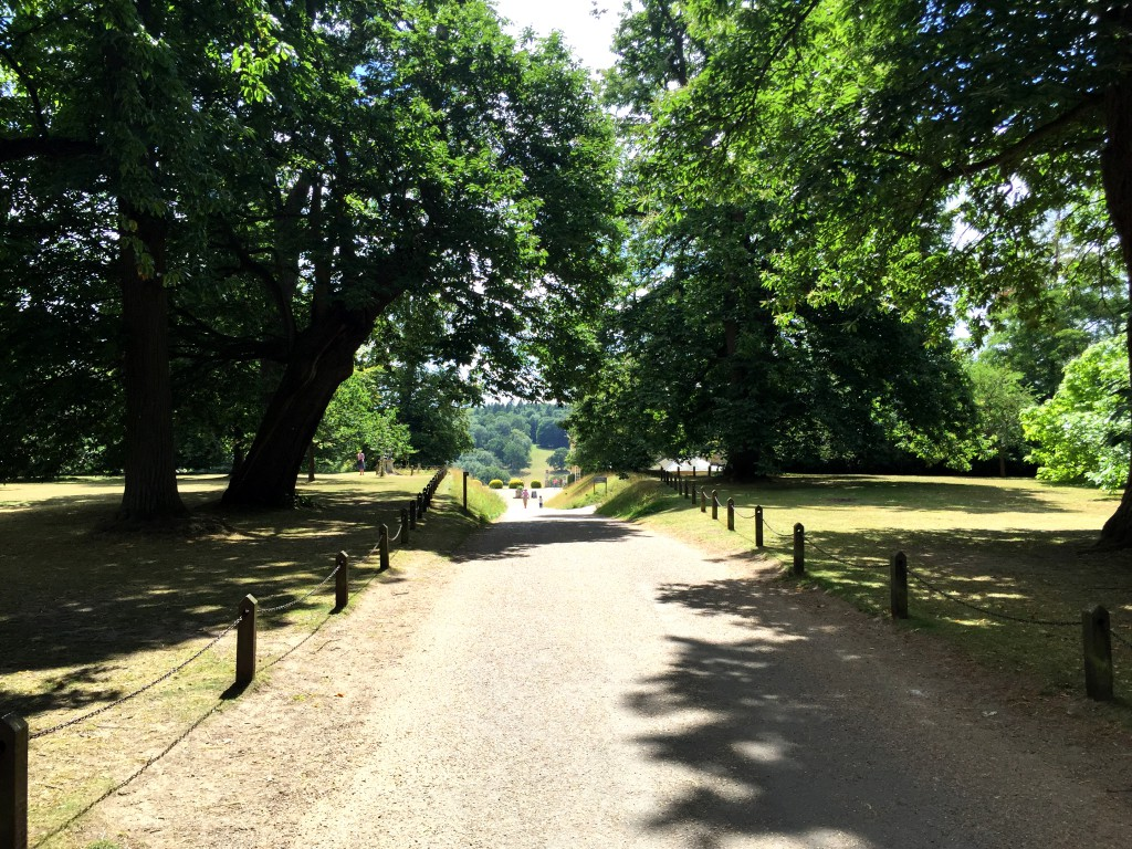 Polesden Lacey - driveway