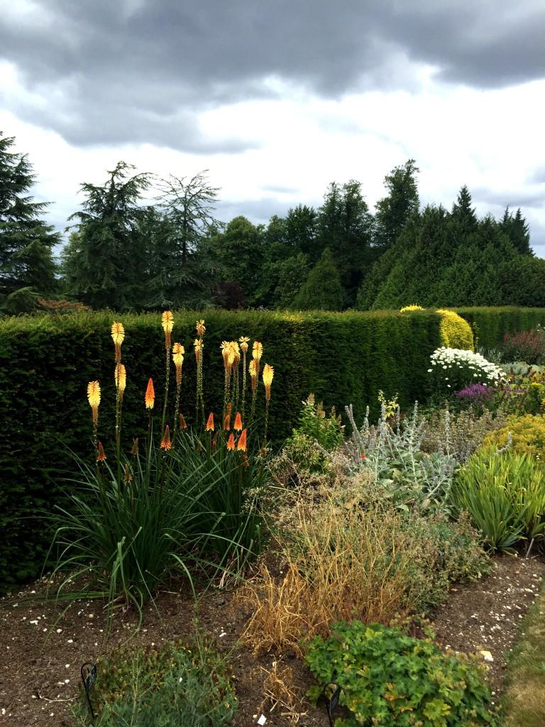 Polesden Lacey - garden 2