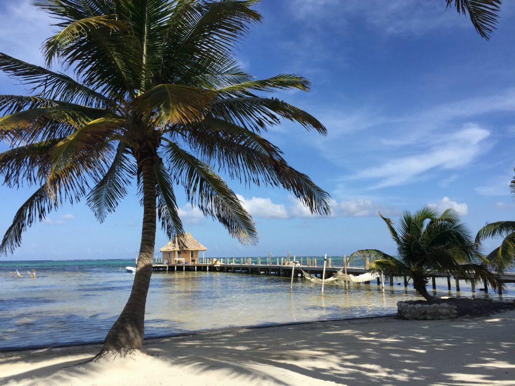 Ambergris Caye 10
