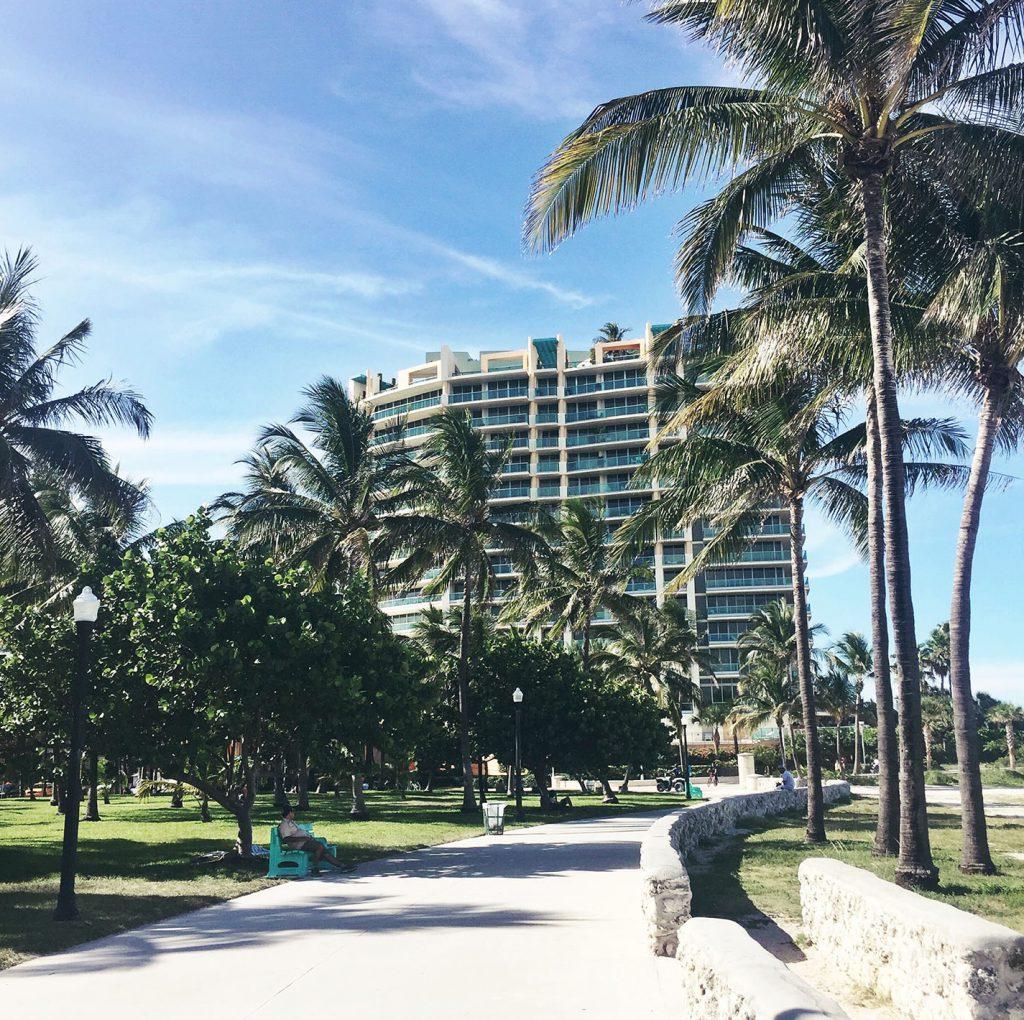 Miami Photo Diary 3